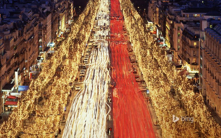 париж, улица, елки, франция, рождество, елисейские поля, paris, street, tree, france, christmas, champs elysees
