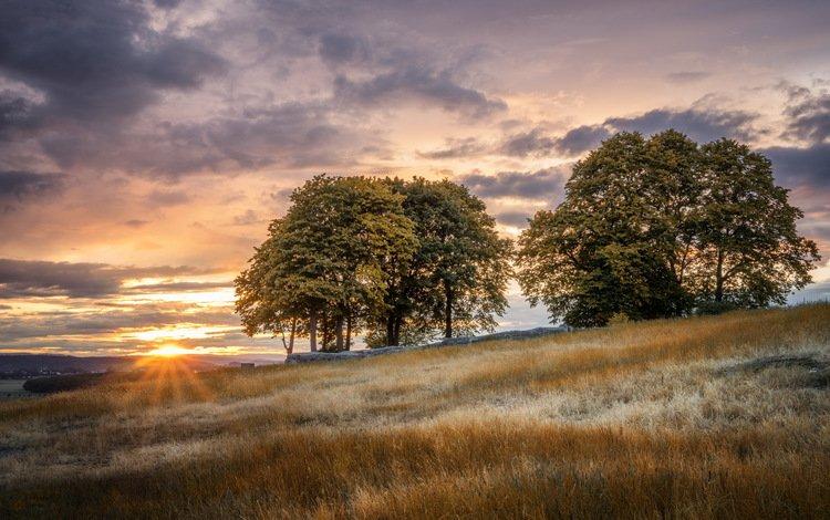закат, пейзаж, поле, sunset, landscape, field