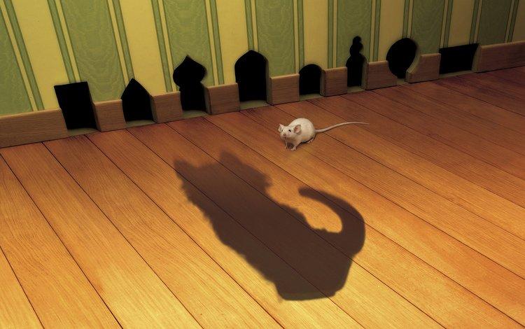 кот, тень, мышь, cat, shadow, mouse