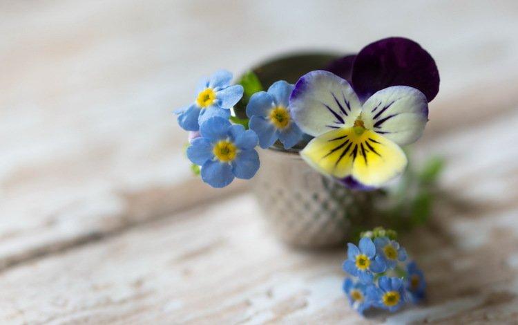 цветы, фон, букет, незабудки, анютины глазки, flowers, background, bouquet, forget-me-nots, pansy