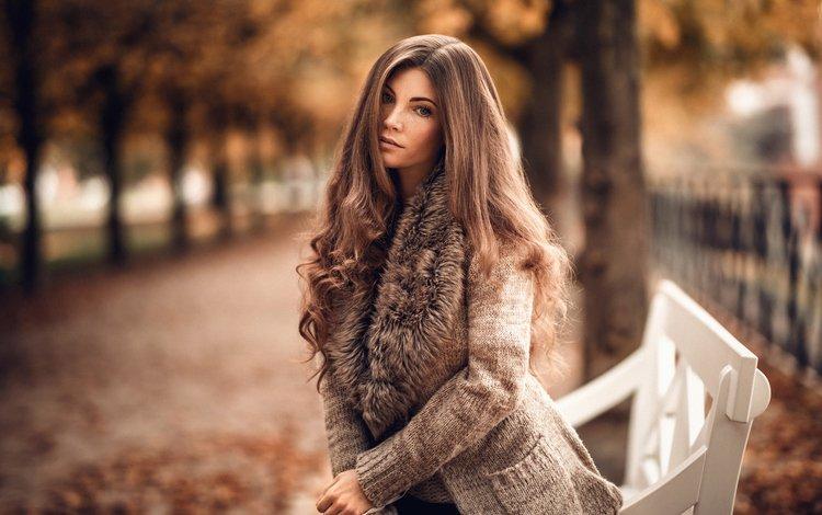 деревья, кофта, прелесть, листья, милая, длинноволосая, девушка, лавочка, софи, парк, аллея, мартин кюн, взгляд, веснушки, осень, шатенка, красавица, нежная, модель, шарф, trees, jacket, the beauty, leaves, sweetheart, long-haired, girl, shop, sophie, park, alley, martin kuhn, look, freckles, autumn, brown hair, beauty, gentle, model, scarf