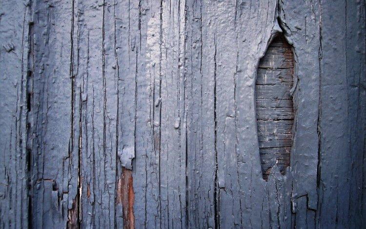 забор, краска, доски, the fence, paint, board