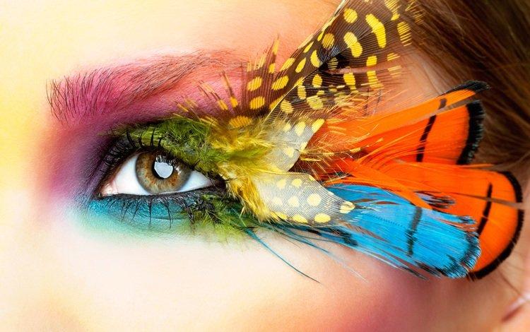 стиль, макро, взгляд, лицо, перья, глаз, style, macro, look, face, feathers, eyes