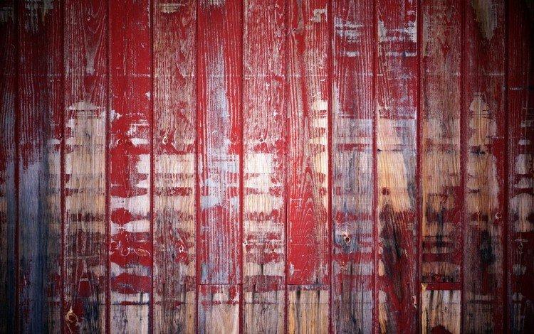 дерево, текстура, забор, краска, доски, tree, texture, the fence, paint, board