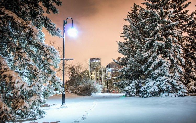 зима, город, фонарь, канада, калгари, winter, the city, lantern, canada, calgary
