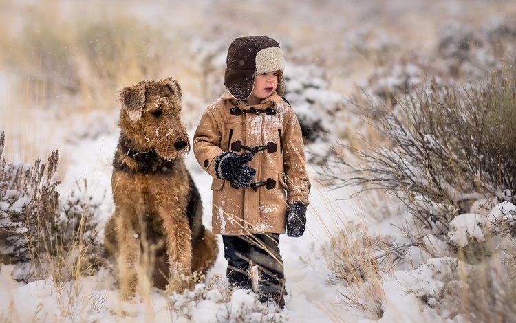 snow, dog, boy, friends