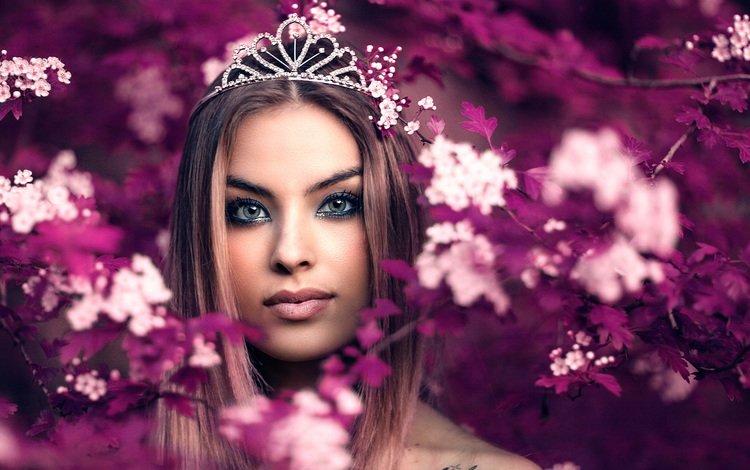 девушка, портрет, queen fairy, алессандро ди чикко, girl, portrait, alessandro di cicco
