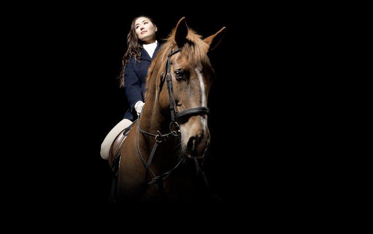 лошадь, девушка, спорт, horse, girl, sport