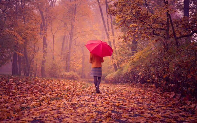 дорога, девушка, пейзаж, листва, осень, спина, красный зонтик, road, girl, landscape, foliage, autumn, back, red umbrella