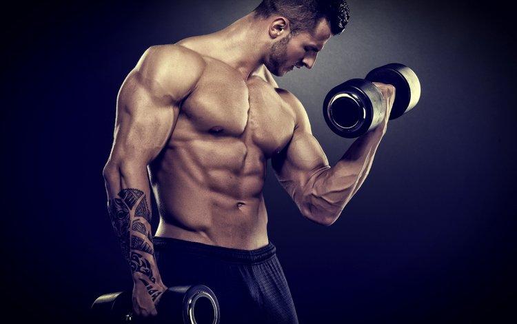 мужчина, мышцы, бодибилдер, мускул, weight training, barbell, male, muscle, bodybuilder