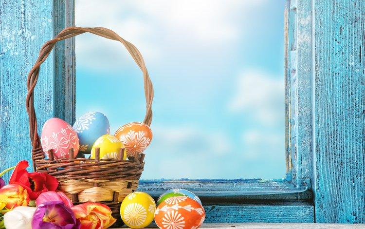 цветы, глазунья, декорация, весна, весенние, корзина, зеленые пасхальные, довольная, тюльпаны, окно, пасха, яйца, тульпаны, цветы, flowers, decoration, spring, basket, happy, tulips, window, easter, eggs