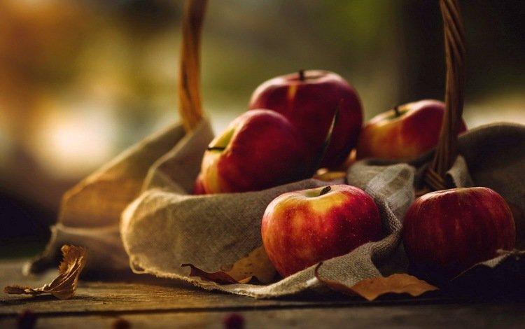 food, fruit, apples