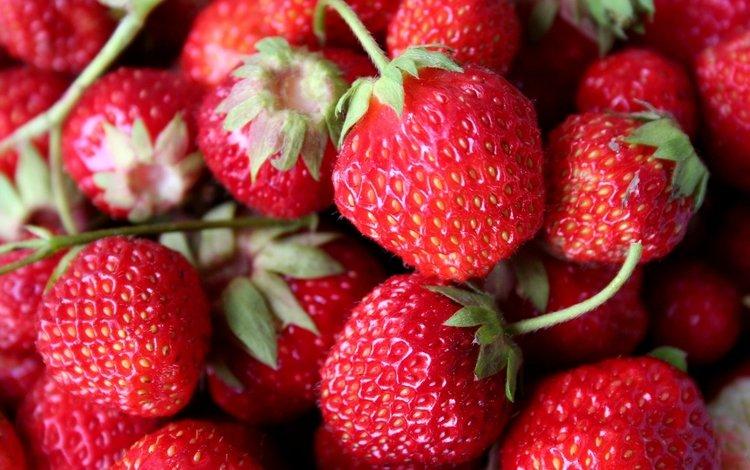 красная, клубника, ягоды, red, strawberry, berries