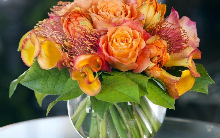 розы, букет, ваза, роз, букеты, callas, roses, bouquet, vase, bouquets