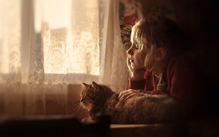 кот, девочка, дом, окно, дружба, уют, мечтания, cat, girl, house, window, friendship, comfort, dreams