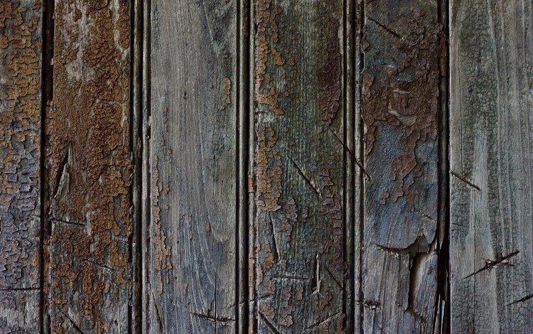 полосы, текстура, доски, eflon, дерево, шелушение, strip, texture, board, tree, peeling