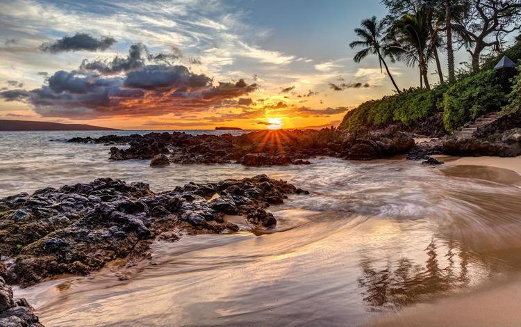 природа, закат, пляж, пальмы, океан, nature, sunset, beach, palm trees, the ocean