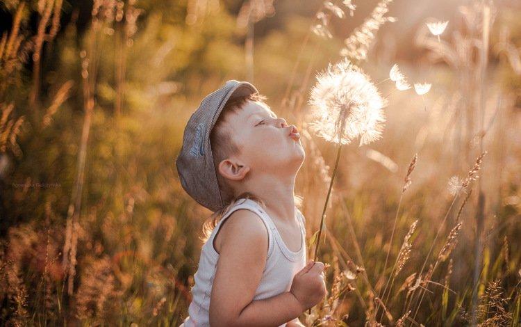 лето, мальчик, одуванчик, summer, boy, dandelion