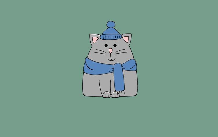 кот, минимализм, шапка, шарф, cat, minimalism, hat, scarf