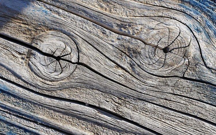 tree, texture, background