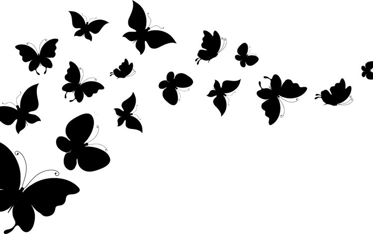 background, wings, white, silhouettes, butterfly