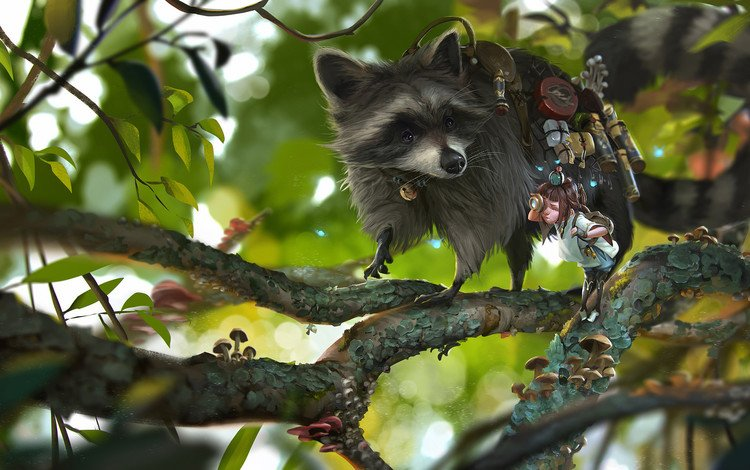 ветки, девочка, енот, rudy siswanto, shipper, branches, girl, raccoon