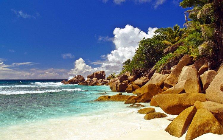 море, пляж, отдых, сейшелы, sea, beach, stay, seychelles