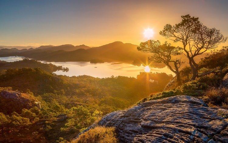 деревья, горы, восход, утро, панорама, ландшафт, trees, mountains, sunrise, morning, panorama, landscape