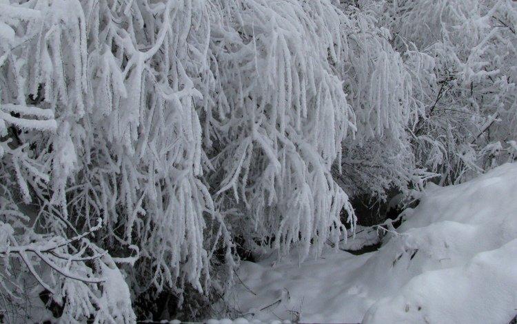 снег, зима, ручей, snow, winter, stream
