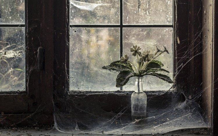 Во сне треснувшее окно