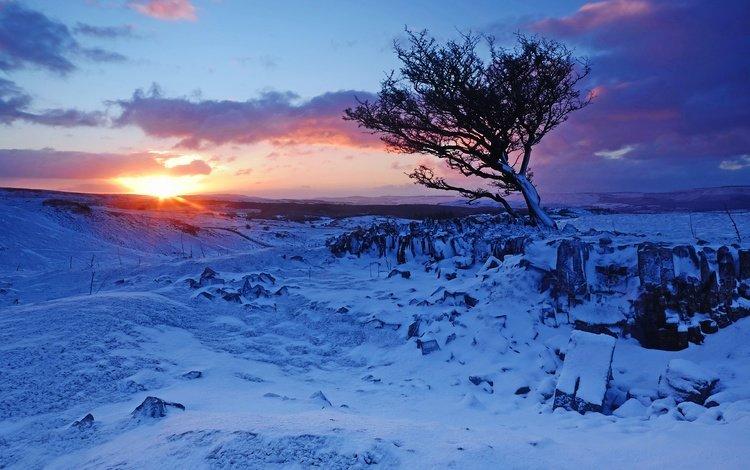 горы, brecon beacons national park, национальный парк брекон-биконс, восход, снег, дерево, зима, рассвет, англия, уэльс, mountains, national park brecon beacons, sunrise, snow, tree, winter, dawn, england, wales