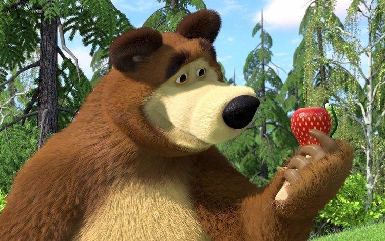 strawberry, cartoon, bear, masha and the bear