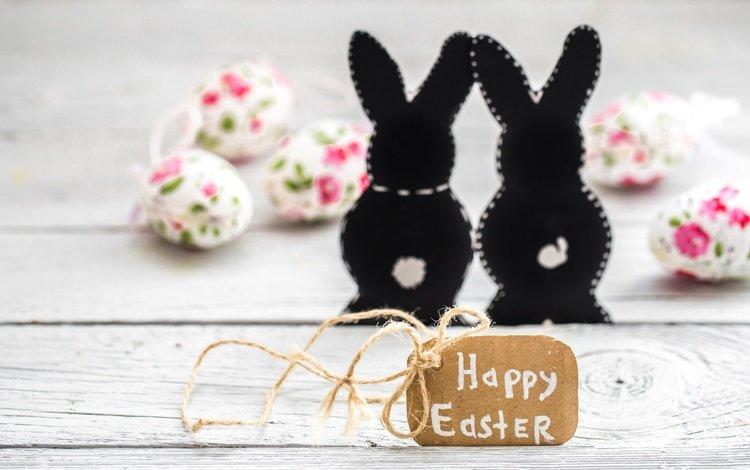 цветы, зайка, пасха, яйца крашеные, пастель, цветы, глазунья, декорация, весенние, зеленые пасхальные, довольная, flowers, bunny, easter, the painted eggs, pastel, eggs, decoration, spring, happy