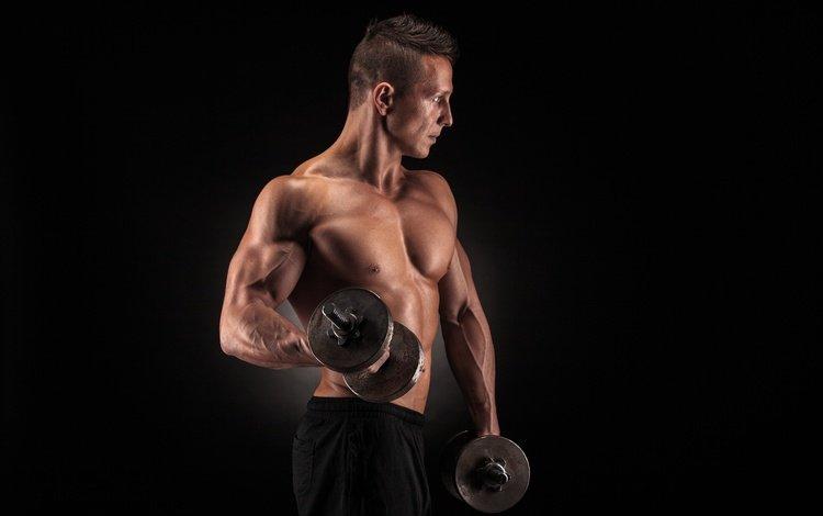 поза, обучение, фитнес, бицепс, мышцы, бодибилдер, атлет, мускул, гантели, тренировка, вес, weight, pose, fitness, biceps, muscle, bodybuilder, athlete, dumbbells, training
