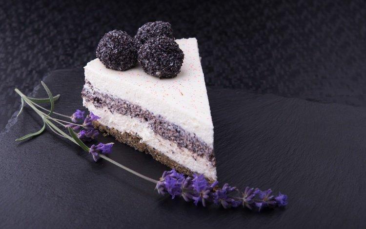 цветок, лаванда, мак, шоколад, торт, десерт, в шоколаде, сладенько, крем, cream, flower, lavender, mac, chocolate, cake, dessert, sweet
