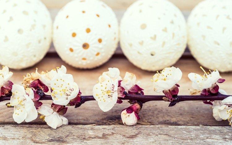 цветы, ветка, доски, пасха, яйца, праздник, flowers, branch, board, easter, eggs, holiday