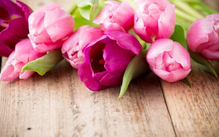 пинк, цветы, букет, тюльпаны, розовые, дерева, красива, тульпаны, цветы, парное, flowers, bouquet, tulips, pink, wood, beautiful, fresh