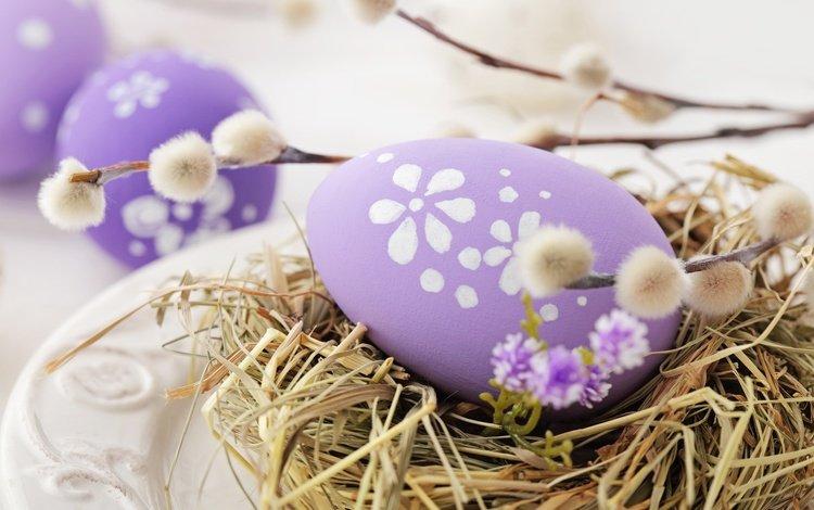 пасха, верба, глазунья, декорация, весенние, зеленые пасхальные, довольная, яйца крашеные, easter, verba, eggs, decoration, spring, happy, the painted eggs