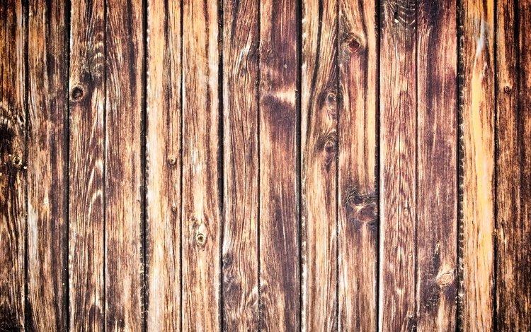 дерево, текстура, доски, tree, texture, board