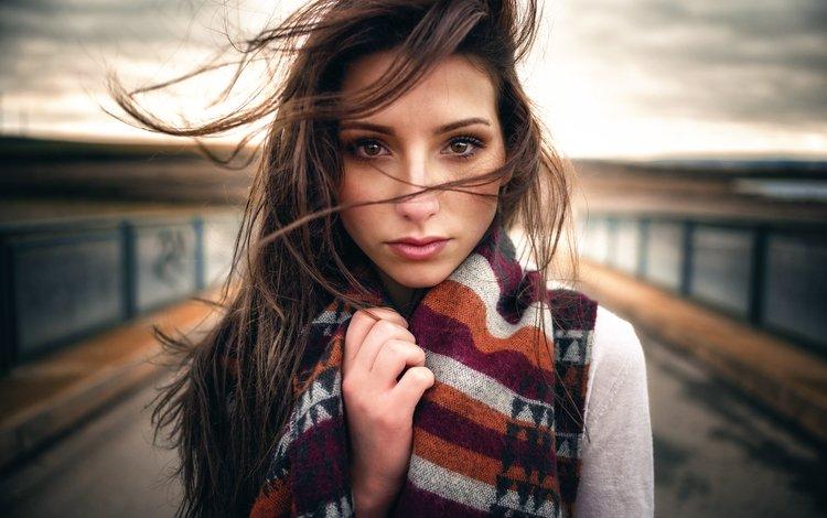 девушка, взгляд, волосы, губки, кареглазая, fjolla, миро hofmann, girl, look, hair, sponge, brown-eyed, miro hofmann