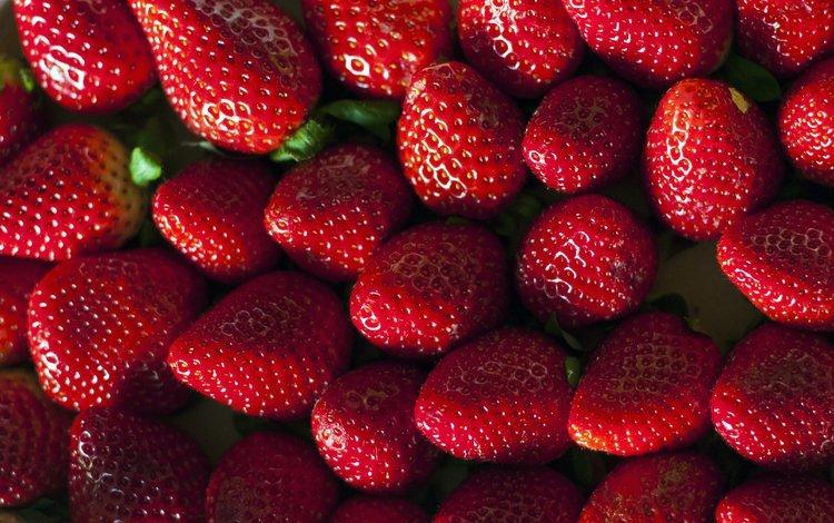 клубника, красные, ягоды, strawberry, red, berries