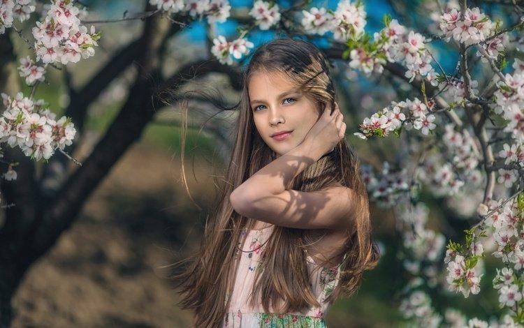 цветение, дети, девочка, весна, волосы, flowering, children, girl, spring, hair