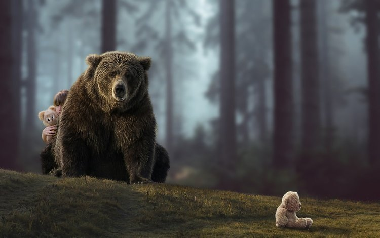 forest, the situation, bear, bears, girl