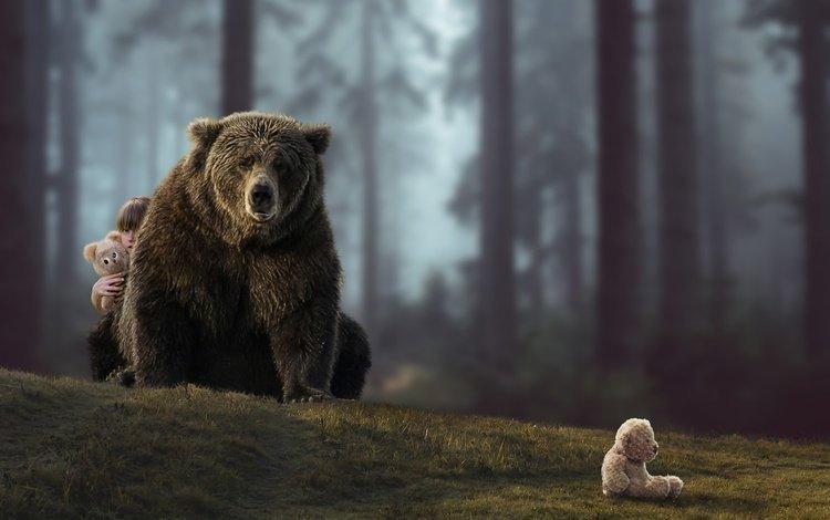 лес, ситуация, медведь, мишки, девочка, forest, the situation, bear, bears, girl