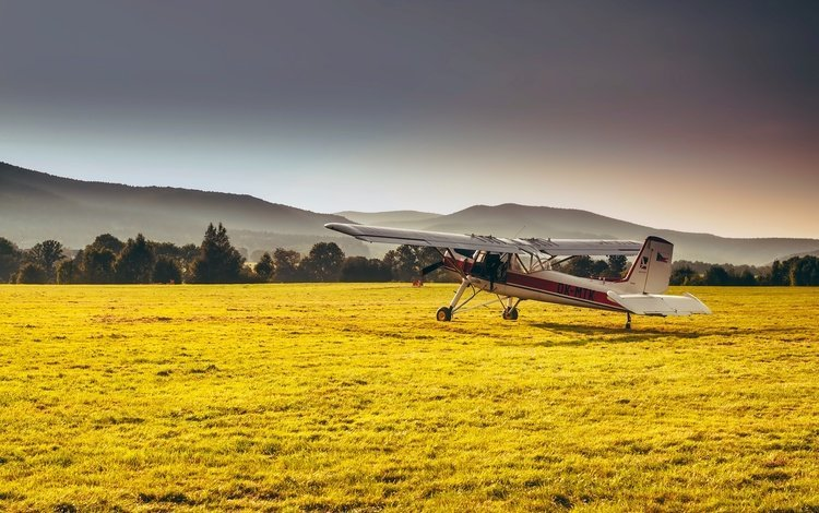 grass, mountains, forest, the plane, field, haze, sunny