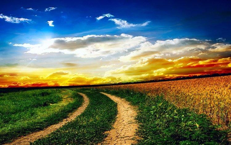 небо, дорога, трава, облака, солнце, природа, поле, the sky, road, grass, clouds, the sun, nature, field
