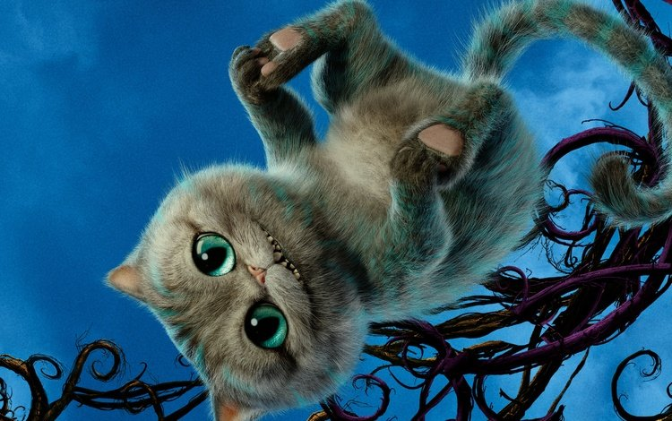 eyes, cat, tail, adventure, alice through the looking glass, cheshire cat