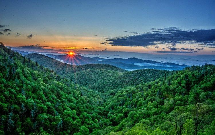 Горы покрытые лесом во время рассвета