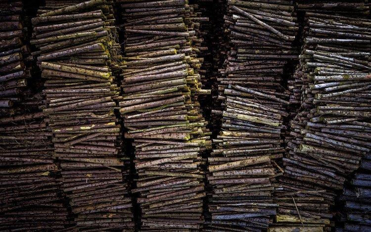 текстура, фон, дрова, бревна, texture, background, wood, logs