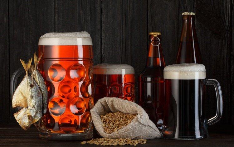 зерна, кружки, черный фон, пиво, бутылки, пена, рыба, grain, mugs, black background, beer, bottle, foam, fish